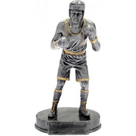 Trofeo boxe cm 17