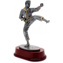Trofeo karate cm 23