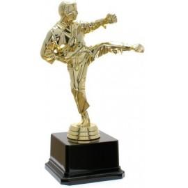 Trofeo karate cm 20