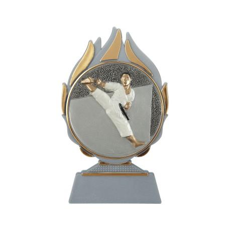 Conf. 6 trofei karate cm 14