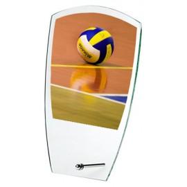 Trofeo volley cm 18