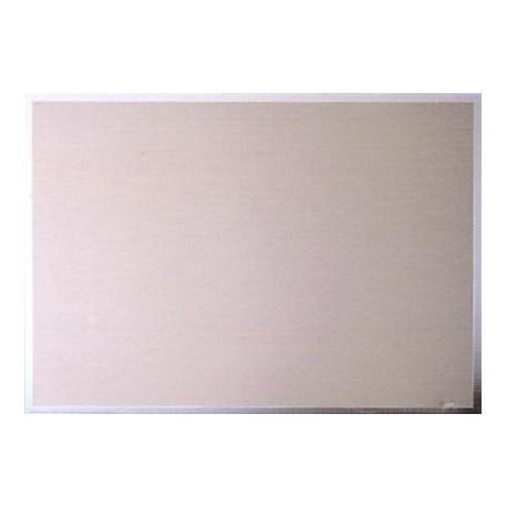 Targa argento 14x10 Gr 43