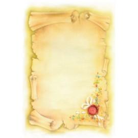 Pergamena 21x15 st. colori