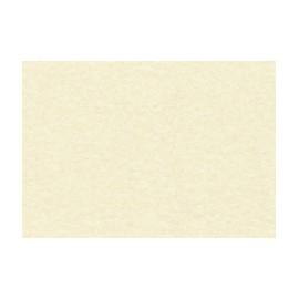 Conf. 20 pergamene A4 gr.90